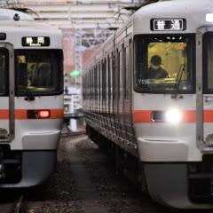 Gyoza-train313【ぎょーざ】