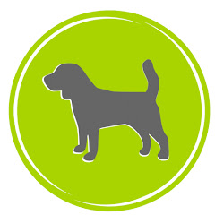 Rottweiler Training Telugu