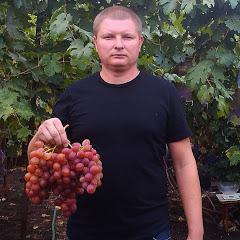 Владимир Маер