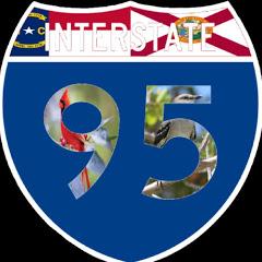 I-9ine5ive