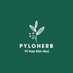 PyLoHerb - Tổ Hợp Sâm Quý