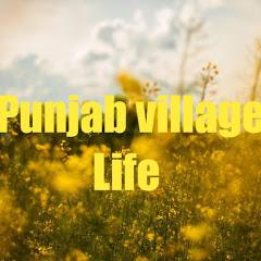 punjab village life