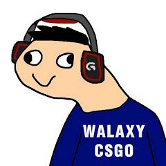 Walaxy CSGO