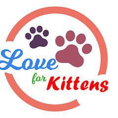 Love for Kittens