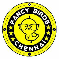 Fancy Birds Chennai