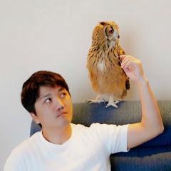 GEN3 OWL CHANNEL