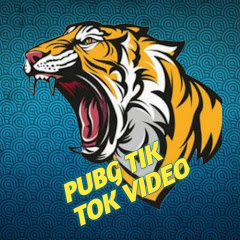 PUBG TIK TOK VIDEO