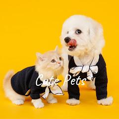 cute pets