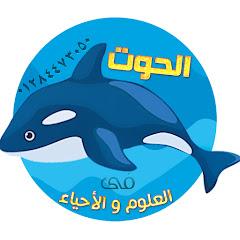 الاستاذ احمد الحوت