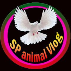 SP animal Vlog