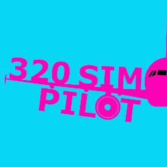 320 Sim Pilot