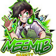 MeeMib GamerTV