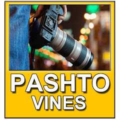 Pashto Vines Music
