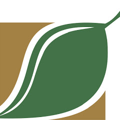 Ecosklad Экосклад производство из картона