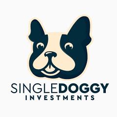 單身狗投資成長日記