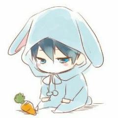 Rabbit -G