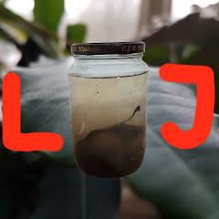 Life in Jars?
