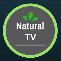 Natural TV - Receitas e Dicas de Saúde