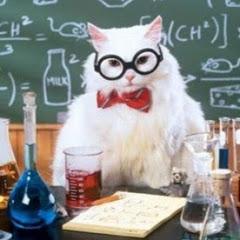 Птичка Химичка -Химия с Нуля-