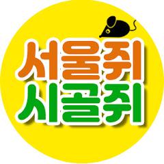 서울쥐시골쥐