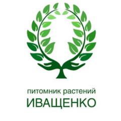 Питомник Роз Иващенко