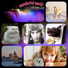 WONDERFUL WORLD OFFICIAL CHANNEL