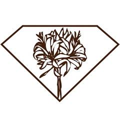 ダイヤモンドリリー Diamondlily