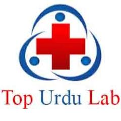 Top Urdu Lab