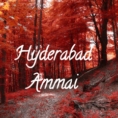 Hyderabad Ammai