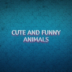 Cute and Funny Animals