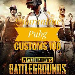 Quarantine PUBG Customs 100