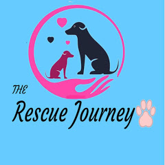 The Rescue Journey tv