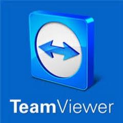 Teamviewer Domination