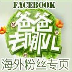 爸爸去哪儿FACEBOOK海外粉丝专页频道