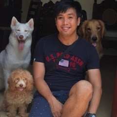 Alvin's Dog Training Secrets -DogLovers Vlog