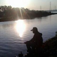lim fisher 500