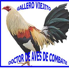 GALLERO VIEJITO