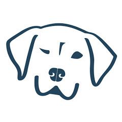 Dog Named Stella