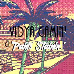 Vidya Gamin & Pants Stainin