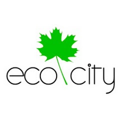 Эко Сити