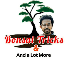 Bonsai Tricks And a Lot More