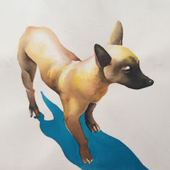 Xochimilco Dog Films