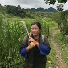 Hmong lom zem channel