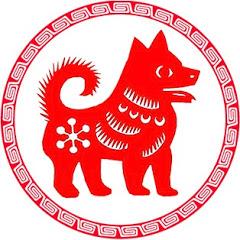 拯救中华田园犬