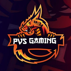 PVS GAMING