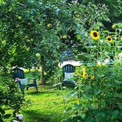 Northlawn Flower Farms