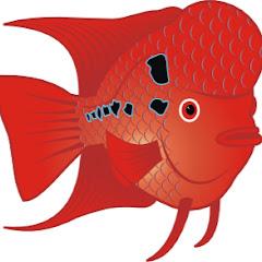 Fish Aquarium Tamil