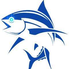 القرش SHARK