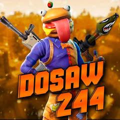 Dosaw 244