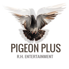 Pigeon Plus